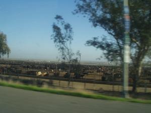 harris-ranch1